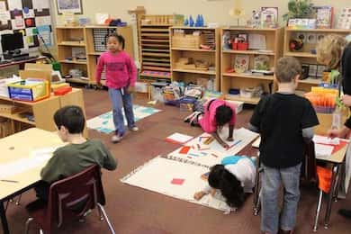 A Montessori 3-6 environment