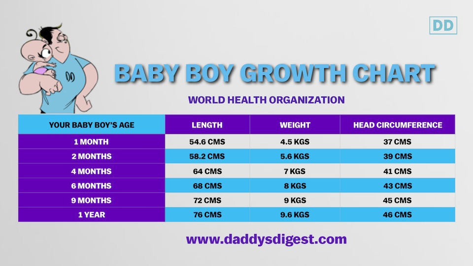 Babys First Year Growth Charts Daddys Digest